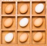 Uova nella diagonale della casella di ombra Immagine Stock Libera da Diritti