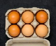 Uova nostrane in scatola Immagini Stock