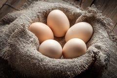Uova organiche crude dell'azienda agricola Immagini Stock