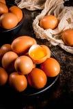 Uova organiche del pollo dell'azienda agricola Immagine Stock Libera da Diritti