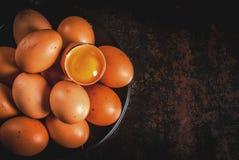 Uova organiche del pollo dell'azienda agricola Fotografia Stock Libera da Diritti