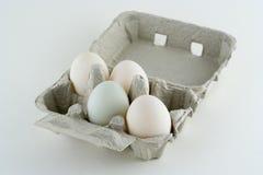 Uova organiche dell'anatra Fotografie Stock Libere da Diritti