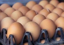 Uova organiche fresche da agricoltura dell'azienda agricola di pollo Fotografia Stock