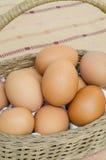 Uova organiche fresche in secchio Immagini Stock Libere da Diritti