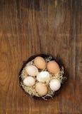 Uova organiche naturali dell'azienda agricola fotografie stock libere da diritti