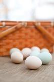 Uova organiche variopinte Fotografia Stock