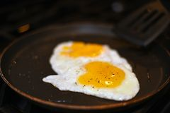 Uova in pentola con pepe fotografia stock
