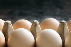 Uova in primo piano del cartone con fondo scuro Immagini Stock Libere da Diritti
