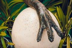 Uova proteggenti del predatore selvaggio della natura del piede del dinosauro in nido fotografia stock libera da diritti