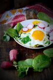 Uova rimescolate con spinaci ed il ravanello Fotografia Stock Libera da Diritti