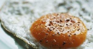 Uova rimescolate su un piatto stock footage