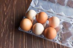 Uova risiedute nelle cellule Fotografia Stock