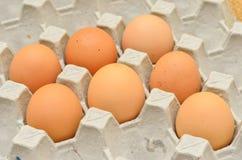 7 uova in scatola delle uova Immagini Stock