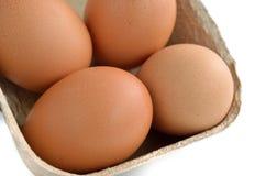 Uova in scatola su bianco Immagini Stock