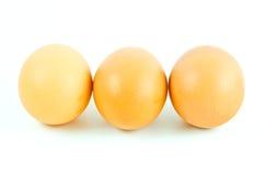 Uova su fondo bianco Fotografie Stock Libere da Diritti