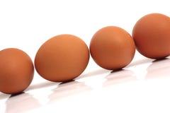 Uova su fondo bianco Fotografia Stock Libera da Diritti