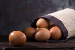 Uova su legno Fotografia Stock