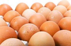 Uova su priorità bassa bianca Immagini Stock