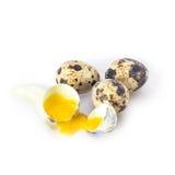 Uova su priorità bassa bianca Fotografia Stock Libera da Diritti