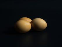 Uova su un fondo nero Fotografia Stock