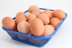 Uova sui precedenti bianchi Fotografia Stock