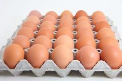 Uova sui precedenti bianchi Immagine Stock Libera da Diritti
