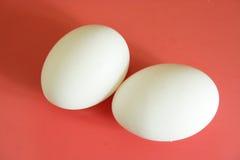 Uova sui precedenti rossi fotografie stock libere da diritti