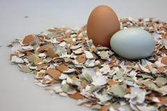 2 uova sul letto dell'uovo Shell schiacciato Fotografia Stock