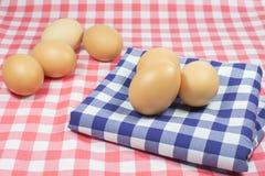 Uova sul plaid blu di colore e sul plaid rosa di colore Fotografia Stock Libera da Diritti