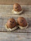 Uova sull'nidi stilizzati su un bordo di legno Immagini Stock Libere da Diritti