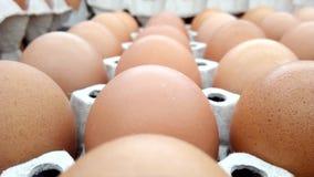 uova sulla scatola delle uova del cartone Fotografia Stock Libera da Diritti