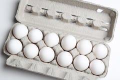 Uova sulle uova bianche Fotografia Stock Libera da Diritti
