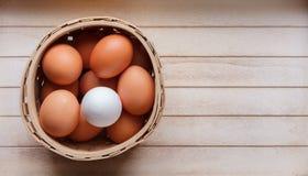 Uova in un canestro - uno differente Fotografia Stock Libera da Diritti