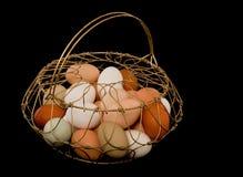 Uova in un cestino di collegare fotografia stock libera da diritti