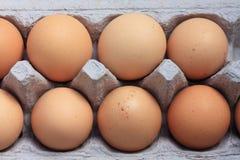 Uova in un contenitore di scatola Immagini Stock