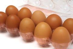 Uova in un imballaggio di plastica del contenitore di cartone fotografia stock libera da diritti
