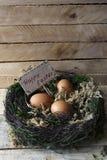 Uova in un nido su un supporto di legno stilizzato 4 Fotografia Stock Libera da Diritti