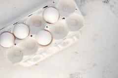 Uova in una scatola speciale Quattro uova bianche Fotografia Stock