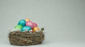 Uova variopinte del pollo in un nido su un fondo bianco in cui cade una piuma leggera, Pasqua, spazio della copia, movimento lent video d archivio