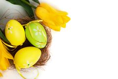Uova variopinte di Pasqua con i tulipani gialli Fotografia Stock Libera da Diritti