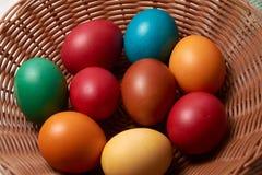 Uova variopinte Pasqua felice di quaglia e del pollo Immagine Stock