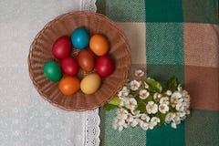 Uova variopinte Pasqua felice di quaglia e del pollo con i fiori Fotografie Stock Libere da Diritti