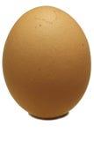 Uovo Fotografie Stock Libere da Diritti