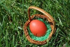 Uovo arancione Immagini Stock