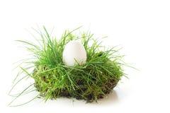 Uovo bianco in un pezzo di erba, decorazione di pasqua isolata Fotografie Stock Libere da Diritti