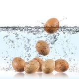 Uovo bollito Fotografie Stock Libere da Diritti