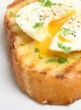 Uovo cotto in camicia su pane tostato Fotografia Stock