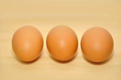 Uovo crudo tre in una fila Fotografie Stock Libere da Diritti