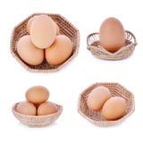 Uovo del pollo, uovo su un fondo bianco Fotografie Stock Libere da Diritti