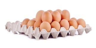 Uovo del pollo, uovo Immagine Stock Libera da Diritti